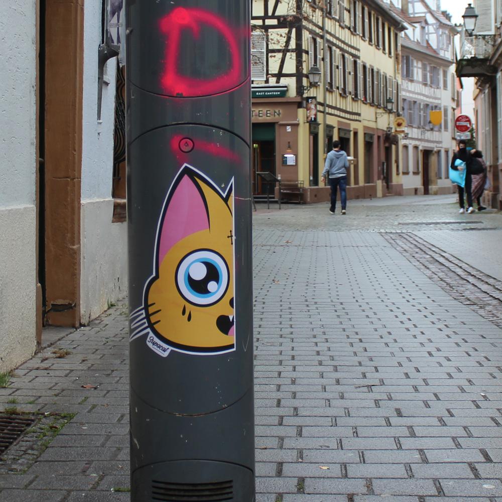 Supacat Strasbourg Half - Supacat Street Art à Strasbourg