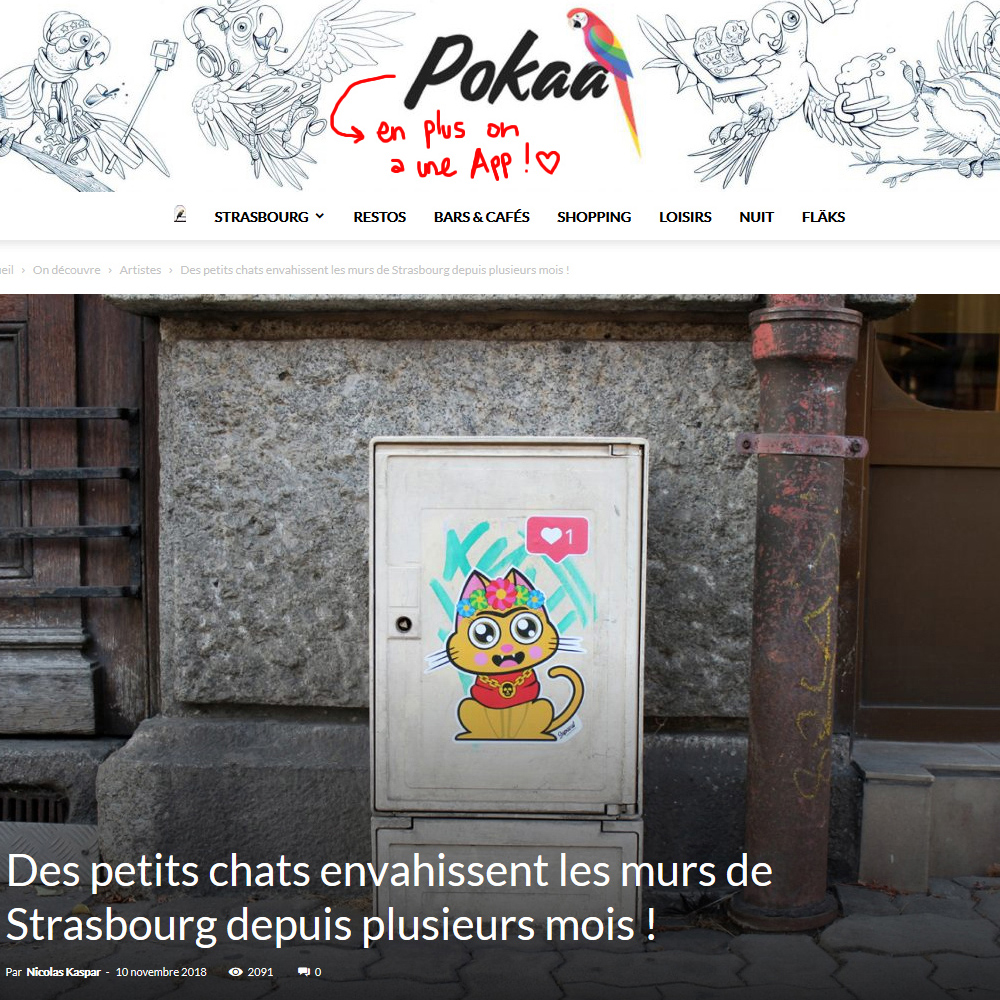 Interview de Supacat par Pokaa - Supacat Street Art