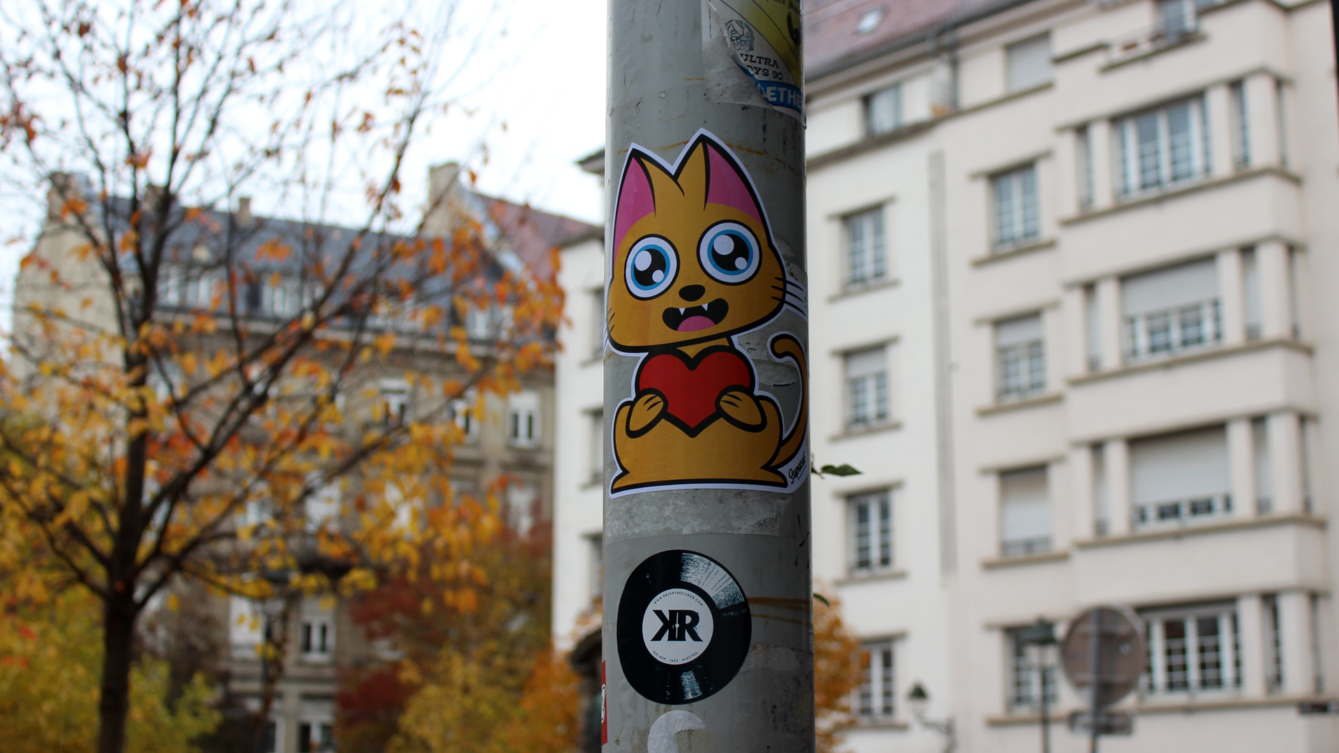 Supacat Strasbourg Always L O V E - Supacat Street Art à Strasbourg