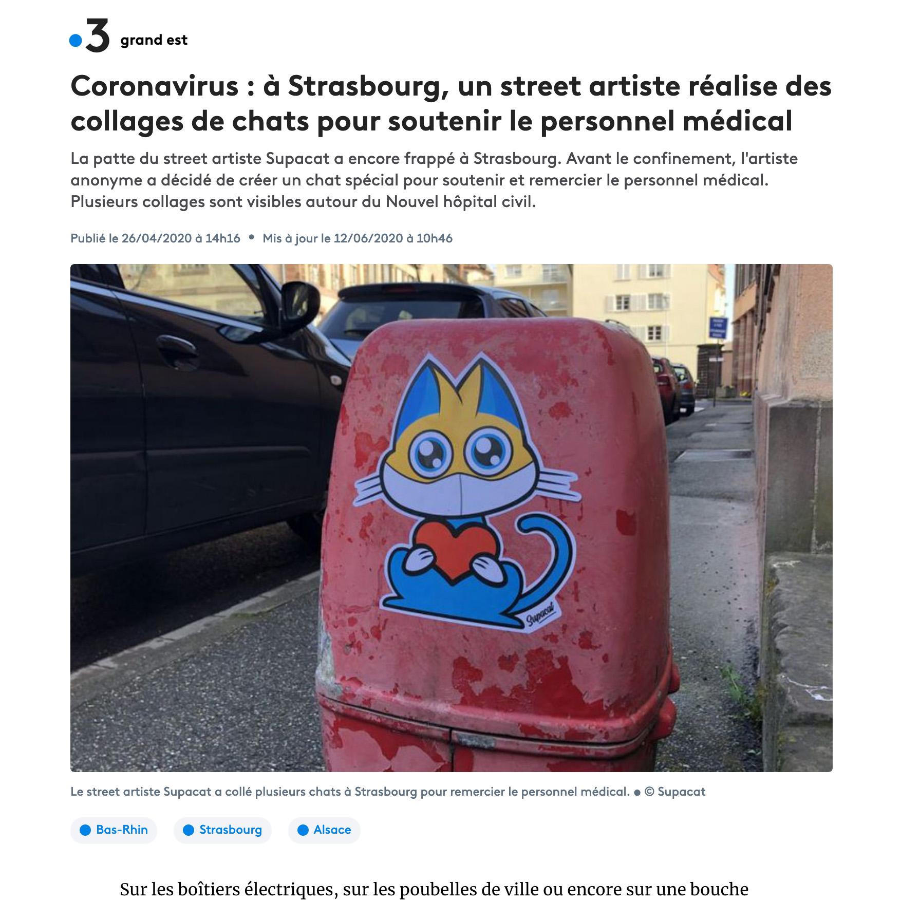 Coronavirus : à Strasbourg, un street artiste réalise des collages de chats pour soutenir le personnel médical