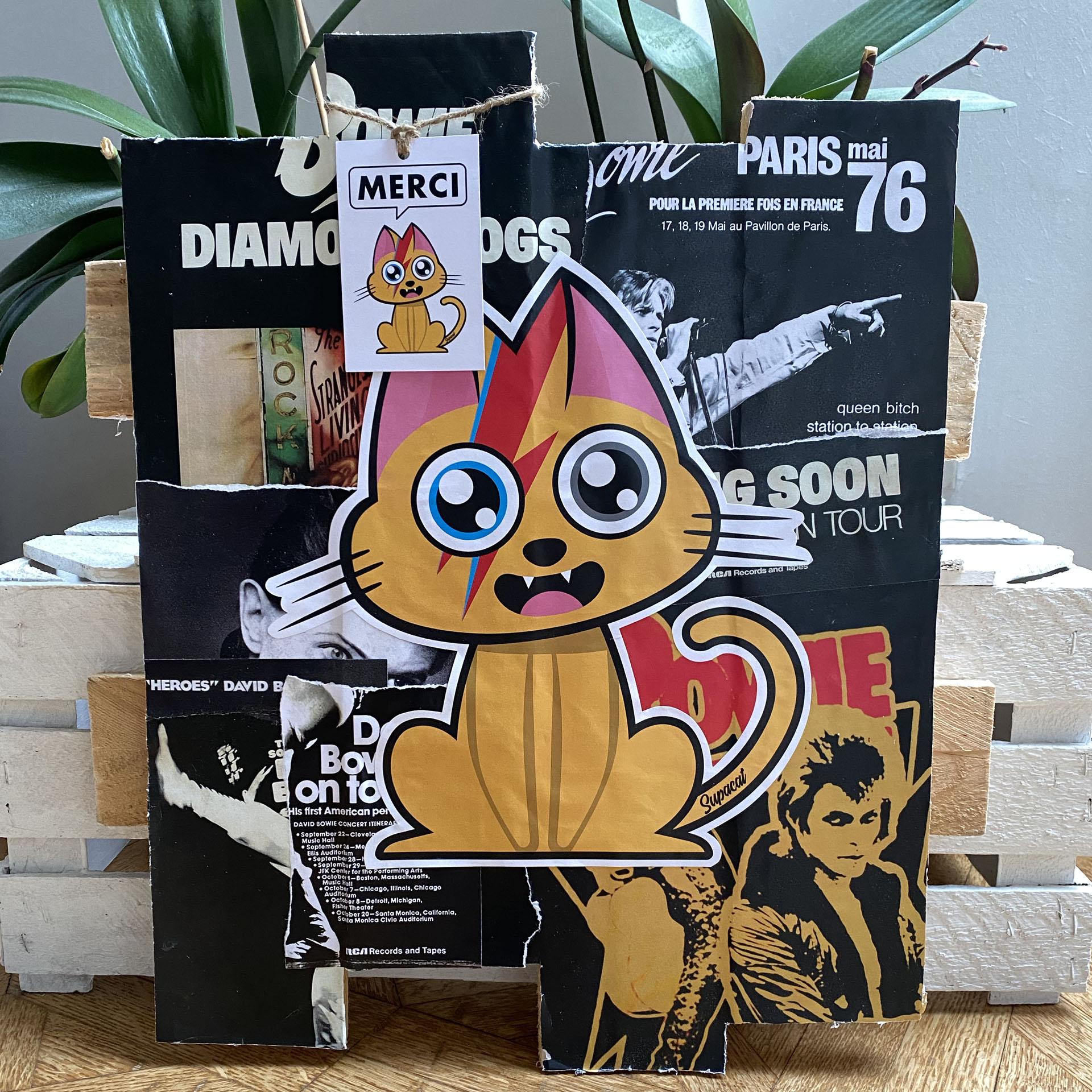 Supacat Street Art Strasbourg - Tableau Bowie Ziggy Catdust #1