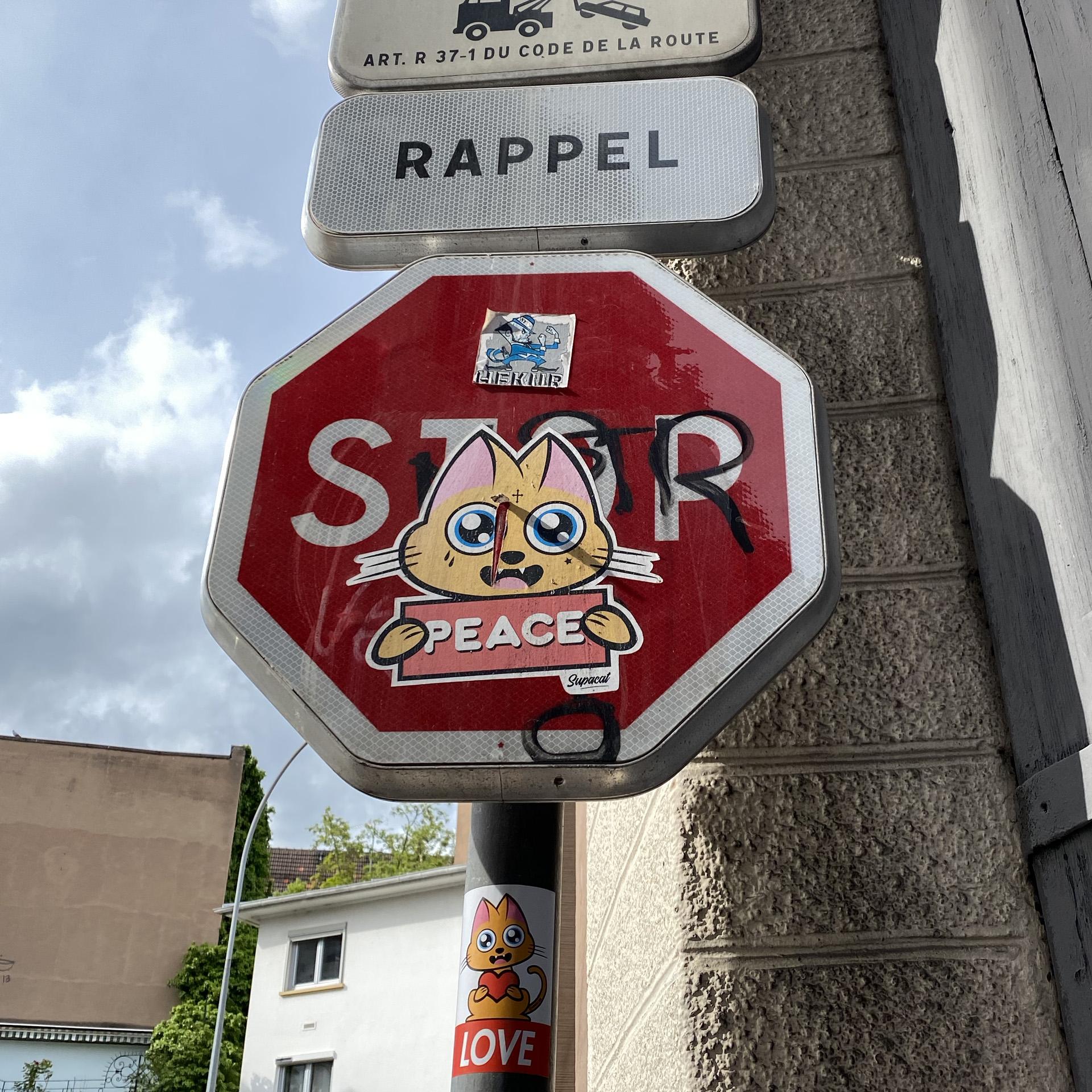 Supacat Street Art Strasbourg - Stickers Supacat
