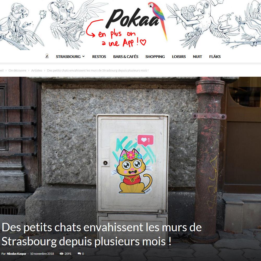 Interview de Supacat par Pokaa - Supacat Street Art