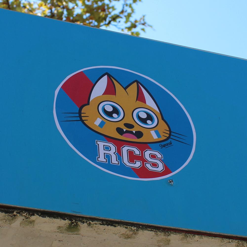 Supacat Street Art Strasbourg - Supa RCS Cat