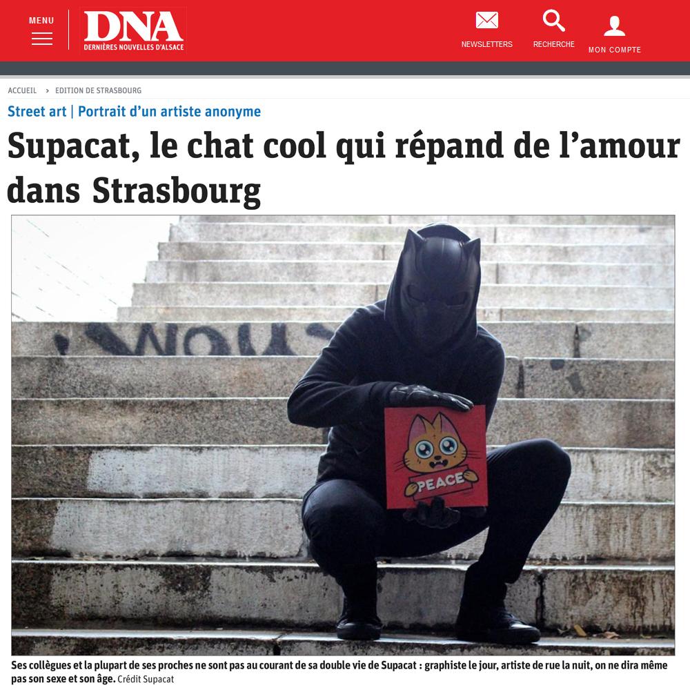 Supacat, le chat cool qui répand de l'amour dans Strasbourg - DNA Strasbourg Juin 2019